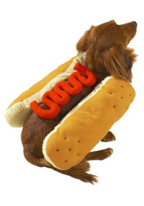 hotdogcostumehalloweencostumes.com